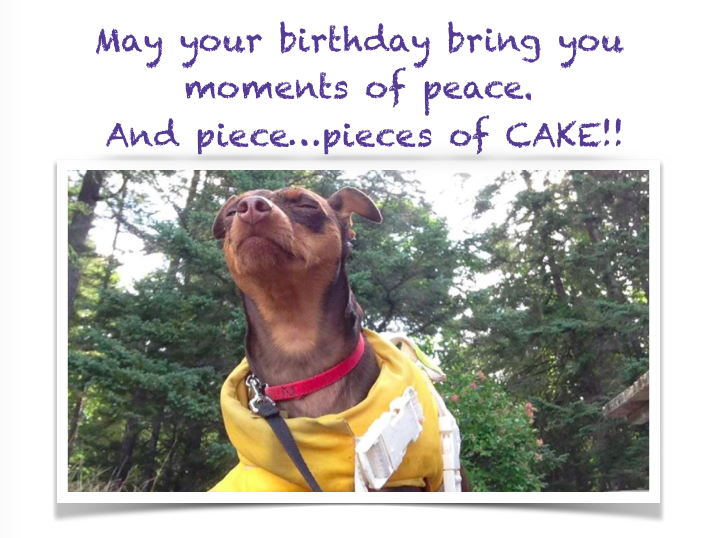 sprocket-birthday-meditation